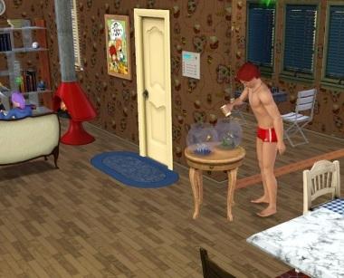 Sims003_007_013_13
