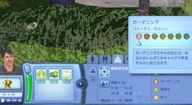 Sims003_007_013_22