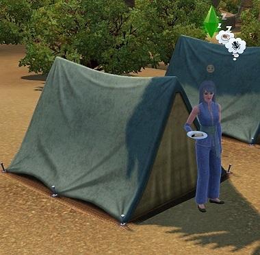 Sims019_021_004_3
