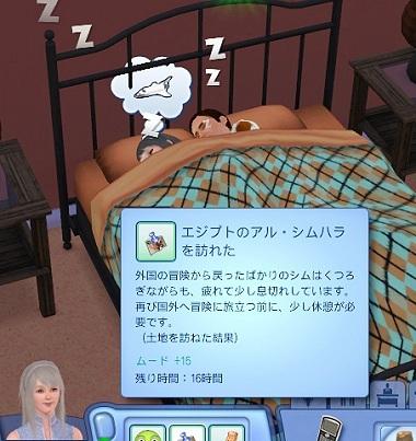 Sims019_021_008_1