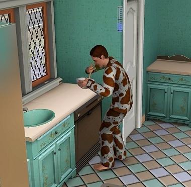 Sims019_021_009_1
