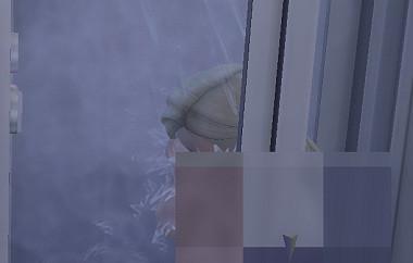 Sims4_01_002_00742