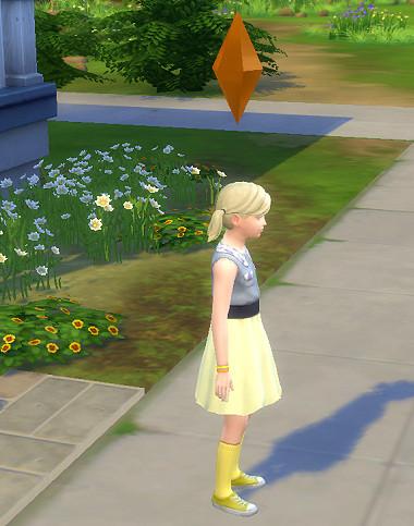 Sims4_01_002_00751