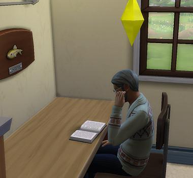 Sims4_01_003_01113