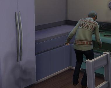 Sims4_01_003_01336
